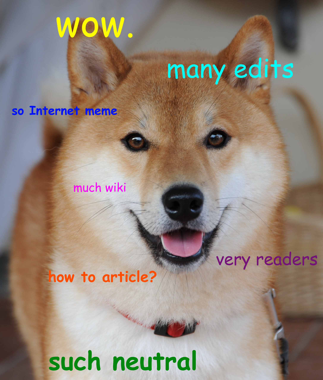 Doge meme Dogecoin