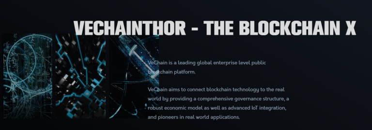 Vechain Thor coin review